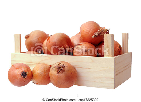 onions in case - csp17325329