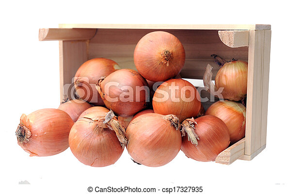 onions in case - csp17327935