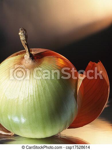 Onions - csp17528614