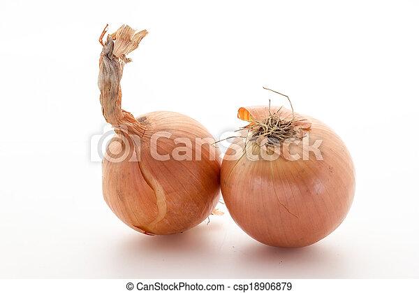 Onions - csp18906879