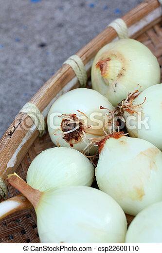 onions - csp22600110