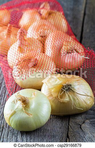 Onions. - csp29166879