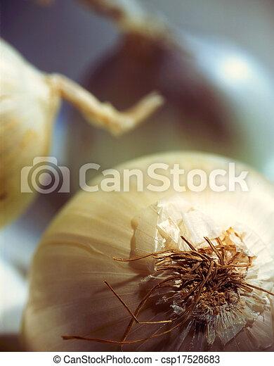 Onions - csp17528683