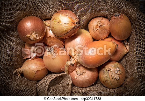 Onions - csp32311788
