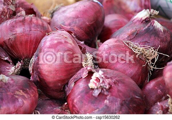 onions - csp15630262