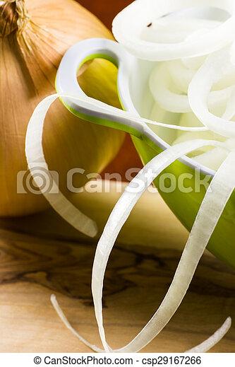 Onions. - csp29167266