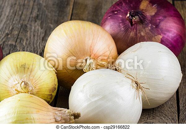 Onions. - csp29166822