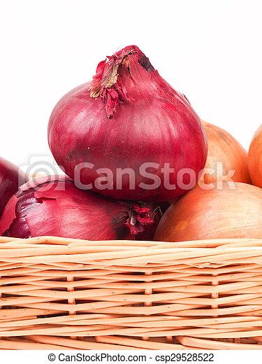 Onions - csp29528522
