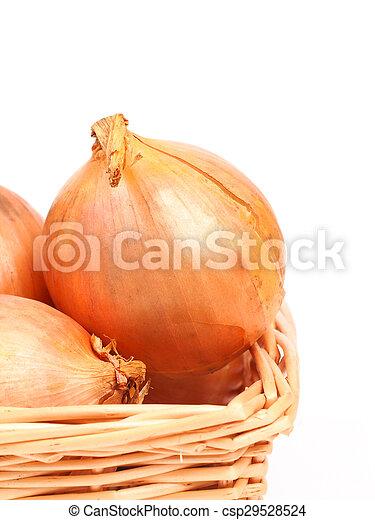 Onions - csp29528524