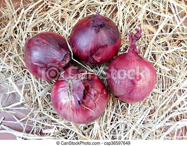onions - csp36597649