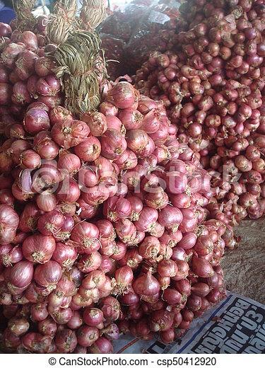 Onions - csp50412920
