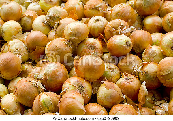 onions - csp0796909