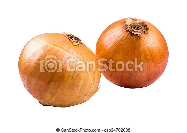 Onions - csp34702008