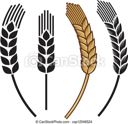 oor, set, tarwe, pictogram - csp12546524