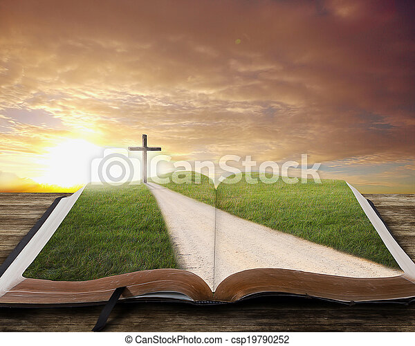 Open Bible with road. - csp19790252