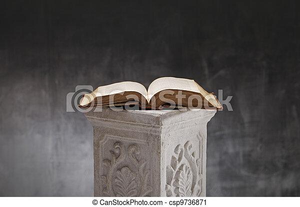 Open Book - csp9736871
