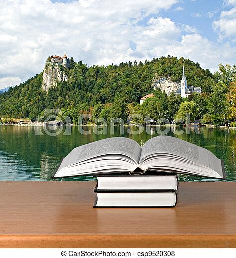 Open book - csp9520308