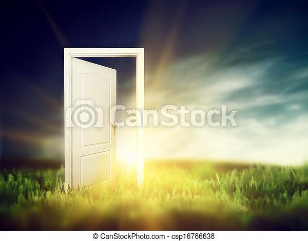Open door on the green field. Conceptual - csp16786638