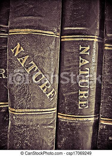 opleiding, boekjes , bibliotheek - csp17069249