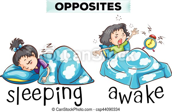 Opposite wordcard with word sleeping and awake - csp44090334