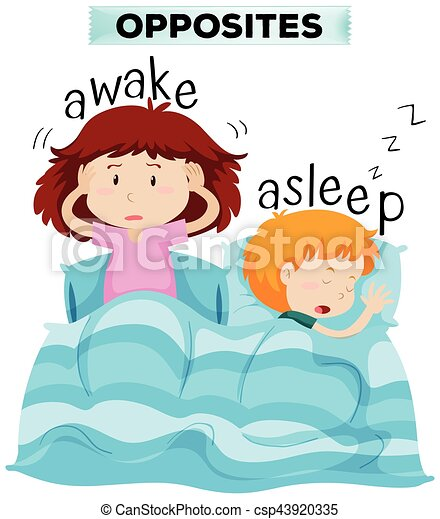 opposite words for awake and asleep illustration vectors wake up early clipart wake up clipart png