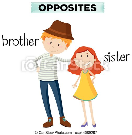 Opposite words for brother and sister - csp44089287