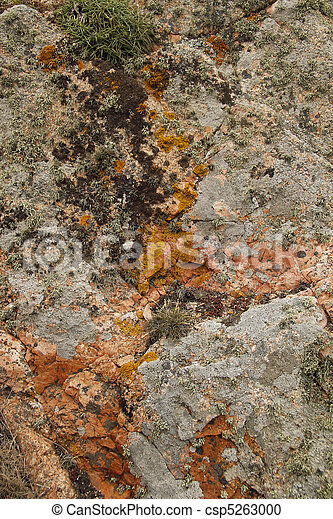 Orange and ochre natural background - csp5263000