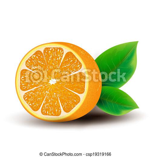 Orange - csp19319166