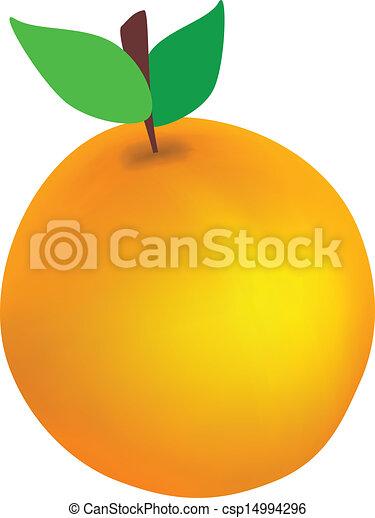 Orange - csp14994296