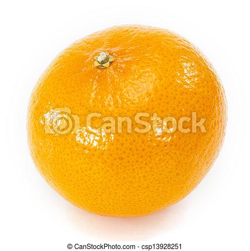 Orange fruit on white background - csp13928251
