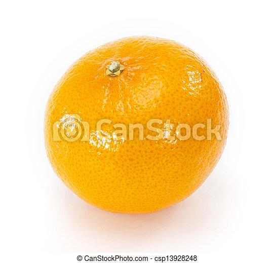 Orange fruit on white background - csp13928248