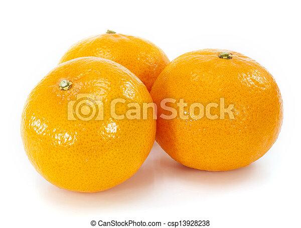 Orange fruit on white background - csp13928238