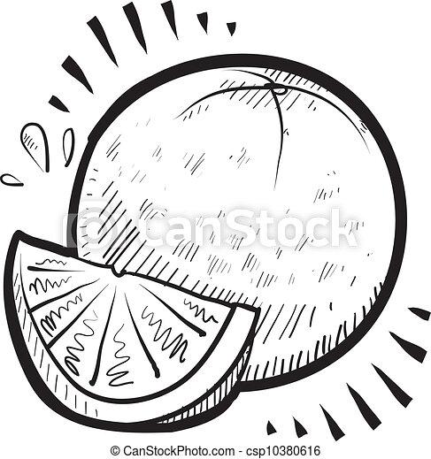 Orange Fruit Clipart Black And White