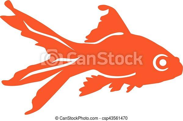 Orange goldfish - csp43561470