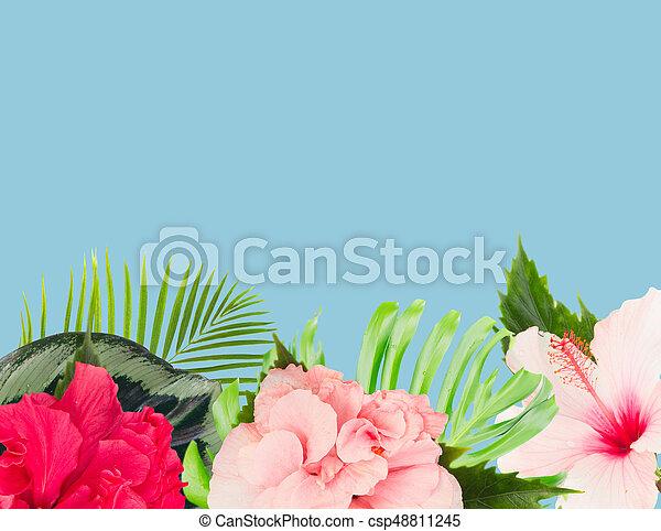 Orange Hibiscus Flower Tropical Fresh Flowers And Leaves Border