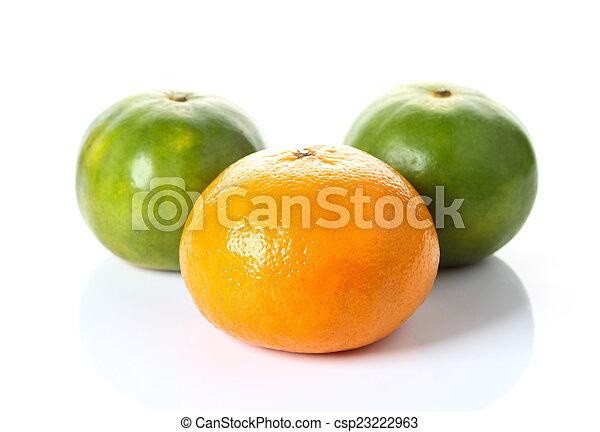 Orange isolated on white background - csp23222963