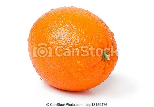 orange on white background - csp13189476