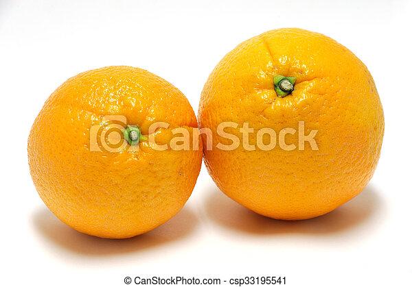 orange on white background - csp33195541