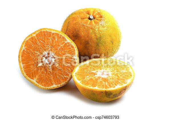 Orange on white background. - csp74603793