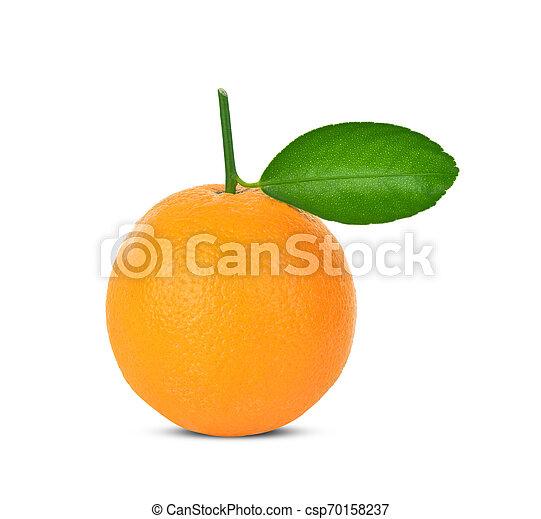 Orange on white background - csp70158237