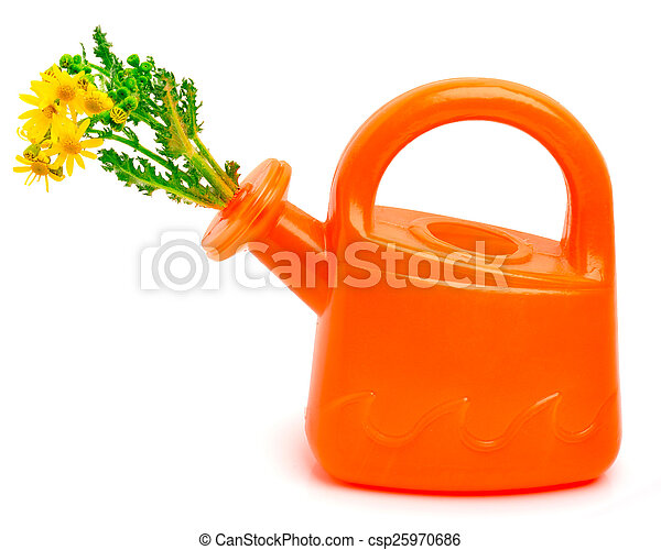 Orange plastic watering can with flowers - csp25970686