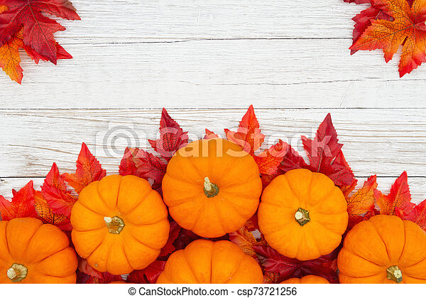 Orange pumpkins with fall leaves on weathered whitewash wood textured background - csp73721256