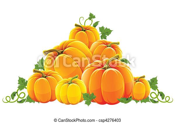 orange, récolte, colline, mûre, citrouille - csp4276403
