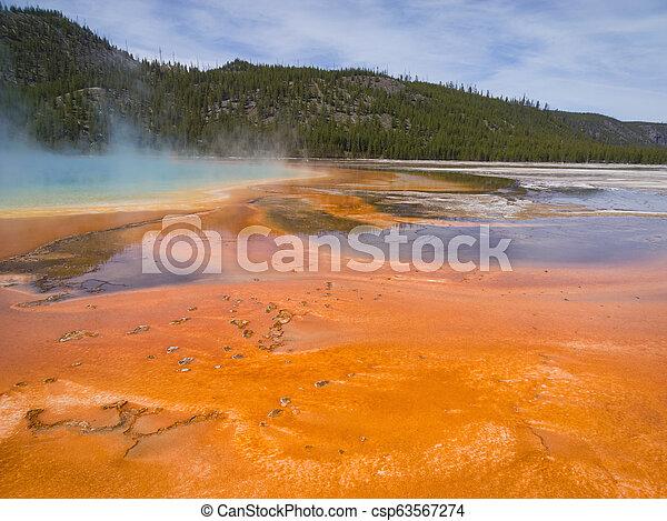Orange Soup - csp63567274