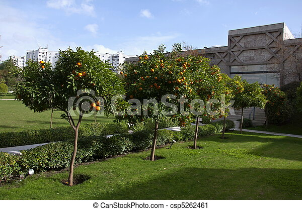 Orangery - csp5262461