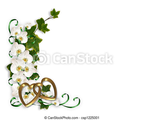 Orchids And Ivy Border Illustration And Image Composition For
