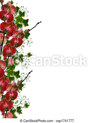 orchids and ivy floral border ivy and orchids image and