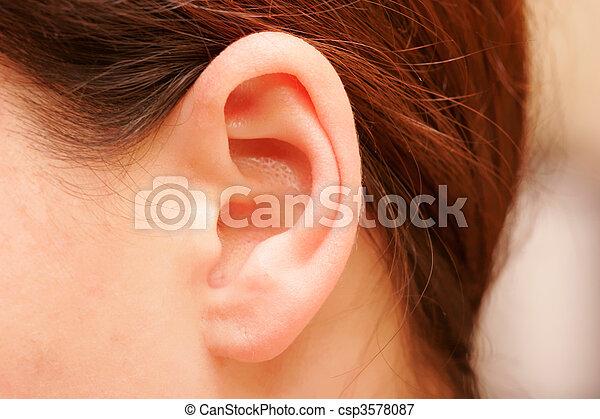 orecchio - csp3578087