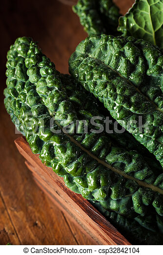 Lacinato kale verde orgánico - csp32842104