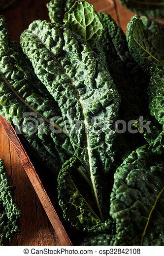 Lacinato kale verde orgánico - csp32842108